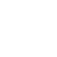 Icon payments